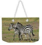 Zebra Males Fighting Weekender Tote Bag