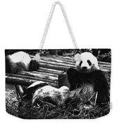 3722-panda -  Advanced Pencil Sketch Weekender Tote Bag