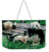 3722-panda -  Pastel Chalk 1 Weekender Tote Bag