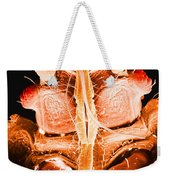 Bedbug Mouthparts, Sem Weekender Tote Bag