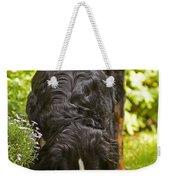 Bernese Mountain Dog Weekender Tote Bag