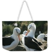 Black Browed Albatross Pair Weekender Tote Bag