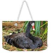 Black Swan At Nest Weekender Tote Bag