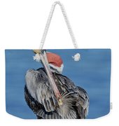 Brown Pelican Preening Weekender Tote Bag