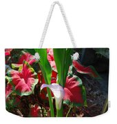 Canna Lily Weekender Tote Bag