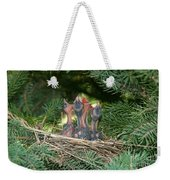 Cedar Waxwings Weekender Tote Bag by Linda Freshwaters Arndt