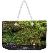 Columbia River Gorge, Oregon, Usa Weekender Tote Bag