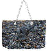 Dark Eyed Junco Weekender Tote Bag