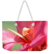 Dwarf Canna Lily Named Shining Pink Weekender Tote Bag