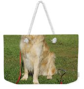 Golden Retriever Dog Weekender Tote Bag