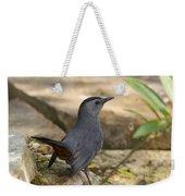 Gray Catbird Weekender Tote Bag
