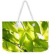 Green Spring Leaves Weekender Tote Bag by Elena Elisseeva
