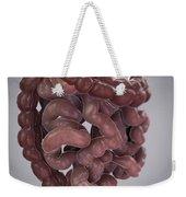 Human Intestines Weekender Tote Bag