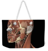 Muscles Of The Head And Neck Weekender Tote Bag