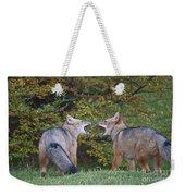 Patagonian Red Fox Weekender Tote Bag