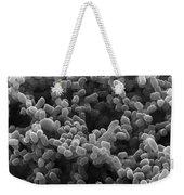 Sem Of Escherichia Coli Weekender Tote Bag