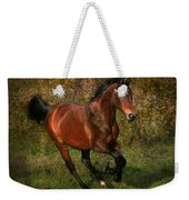 The Bay Horse Weekender Tote Bag