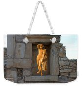 The Palaestra - Apollo Sanctuary Weekender Tote Bag