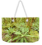 Virgin Rainforest Wilderness Of Fiordland Np Nz Weekender Tote Bag