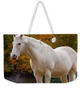 White Horse In Autumn Weekender Tote Bag