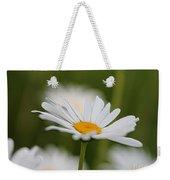 Wildflower Named Oxeye Daisy Weekender Tote Bag