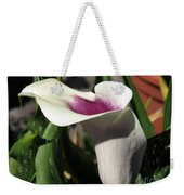 Zantedeschia Named Picasso Weekender Tote Bag