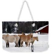 40104-5 Norwegian Horses Weekender Tote Bag