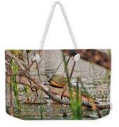42- Florida Red-bellied Turtle Weekender Tote Bag