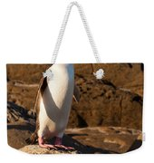 Adult Nz Yellow-eyed Penguin Or Hoiho On Shore Weekender Tote Bag