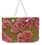 Anthrax Bacteria Sem Weekender Tote Bag