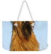 Briard Dog Weekender Tote Bag