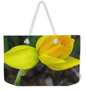 Dwarf Cyclamineus Daffodil Named Jet Fire Weekender Tote Bag