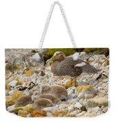 Falkland Steamerduck Weekender Tote Bag