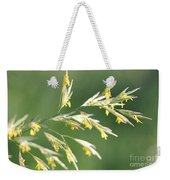 Flowering Brome Grass Weekender Tote Bag