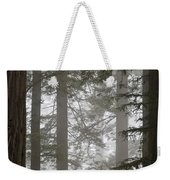 Foggy Coast Redwood Forest Weekender Tote Bag