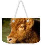 Highland Cow Weekender Tote Bag by Brian Jannsen