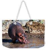 Hippopotamus In River. Serengeti. Tanzania Weekender Tote Bag