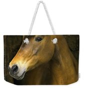 In The Stable Weekender Tote Bag
