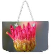 Marguerite Daisy Named Summer Song Rose Weekender Tote Bag