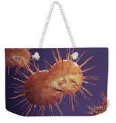 Neisseria Gonorrhoeae Bacteria Weekender Tote Bag