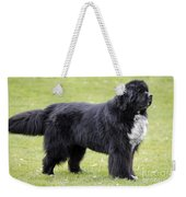 Newfoundland Dog Weekender Tote Bag