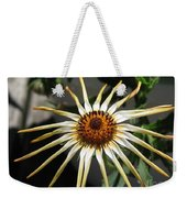 Osteospermum Named African Moon Weekender Tote Bag