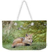 Patagonian Red Fox Weekender Tote Bag