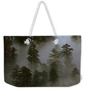 Redwood Creek Overlook With Giant Redwoods Sticking Out Above Lo Weekender Tote Bag