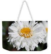 Shasta Daisy Named Paladin Weekender Tote Bag
