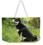 Shiba Inu Dog Weekender Tote Bag