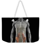 The Psoas Muscles Weekender Tote Bag