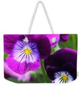 Viola Named Sorbet Plum Velvet Jump-up Weekender Tote Bag