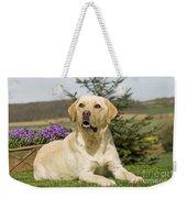 Yellow Labrador Weekender Tote Bag