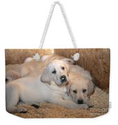 Yellow Labrador Retriever Puppies Weekender Tote Bag
